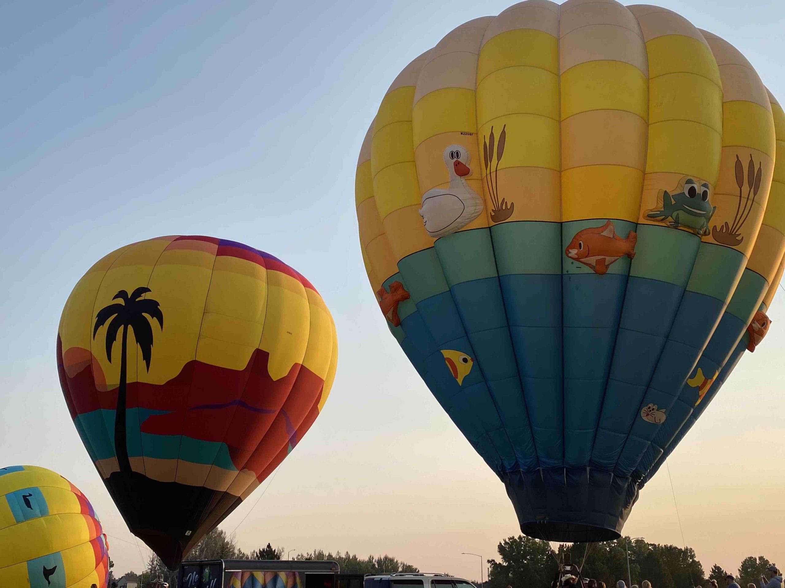 Windsor CO Hot Air Balloon